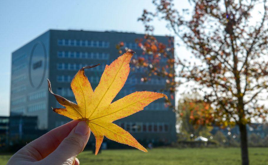 Wageningen University - Orion